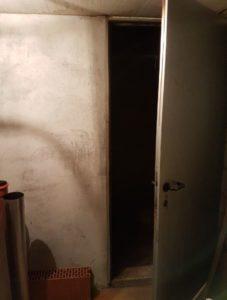 Selche im Keller